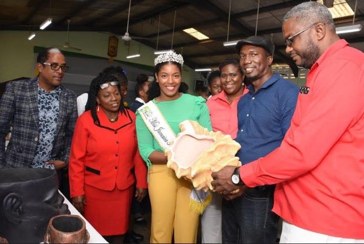 Festival Queen Launches Environmentally Friendly EcoMoney National Project 1
