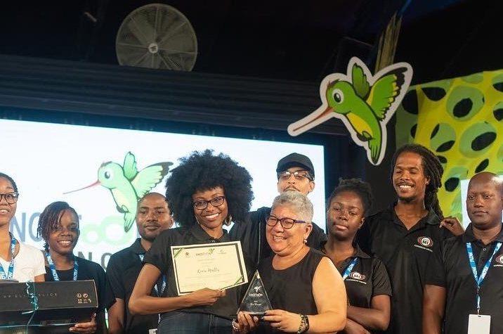 Caribbean Animators Learn, Earn and Display at KingstOOn 3 1