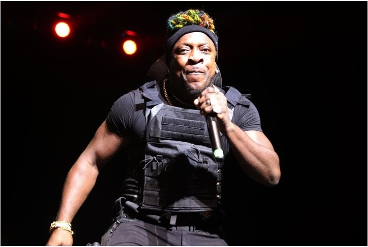 VP Records Celebrates Forty Illustrious Years At Summerstage 1