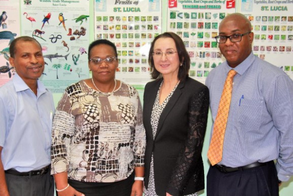 Caribbean Challenge Initiative Relocates To St. Lucia 1