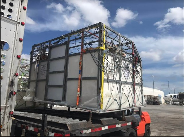 Caribbean Airlines Cargo Transports 159 Dairy Cows from Miami to Barbados 1